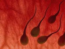 Dấu hiệu nhận biết nam giới xuất tinh ra máu