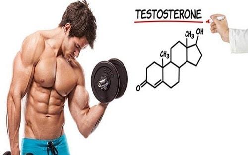 Testosterone có vai trò quan trọng thế nào với sinh lý nam giới 1